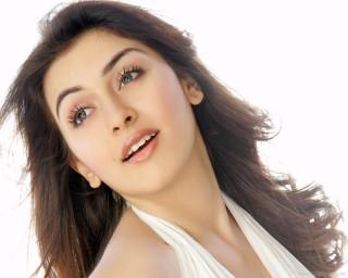 hansika motwani south indian actress hd wallpaper